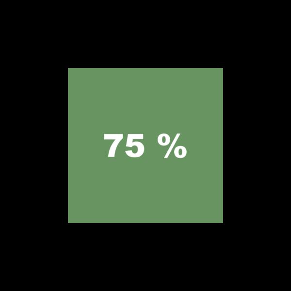 Pilotengrün 75%